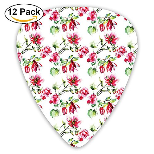 (Newfood Ss Shabby Chic Floral Details Roses Tulips With Leaves And Buds Colored Print Guitar Picks 12/Pack Set)