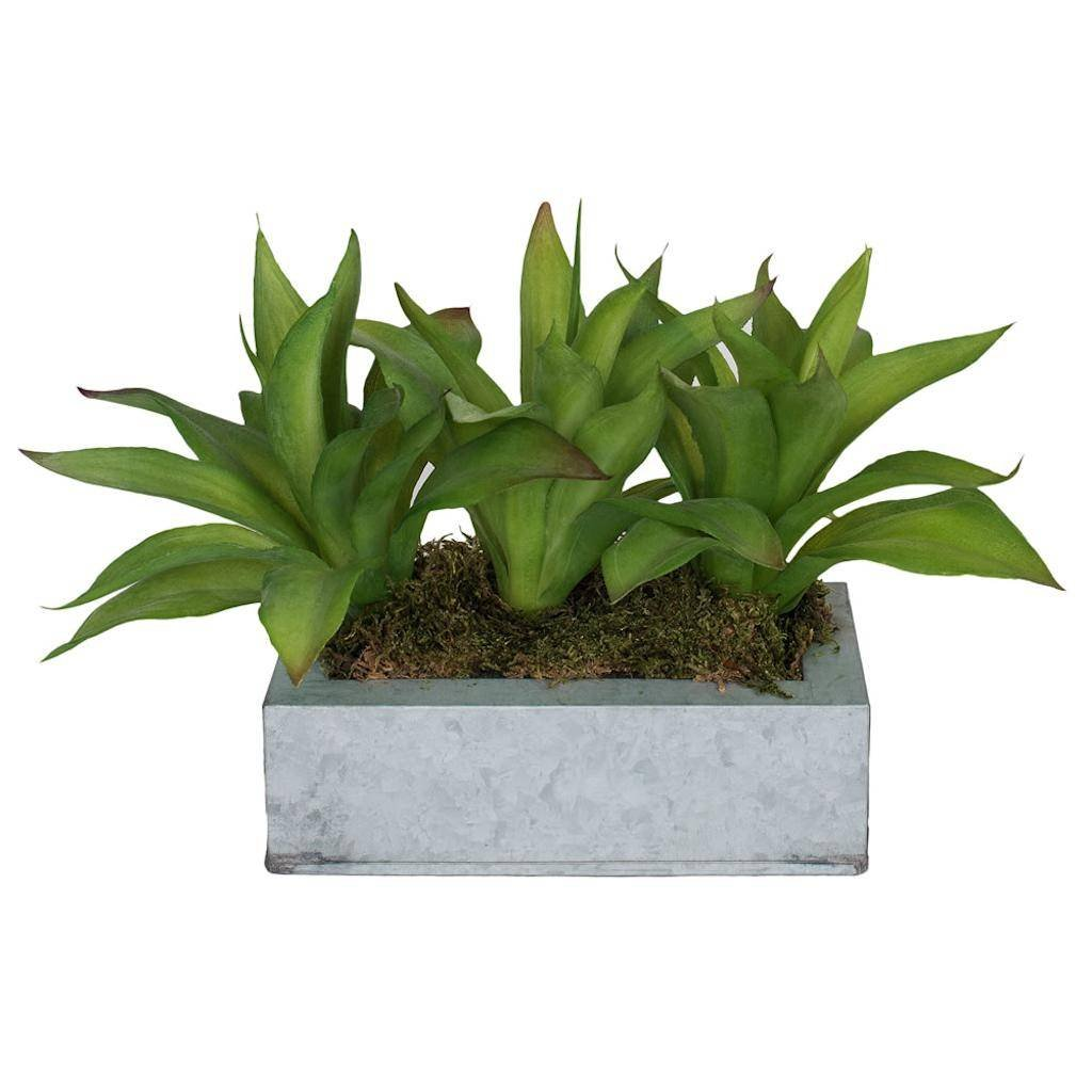 Vickerman F12239 Green Agave Everyday Floral