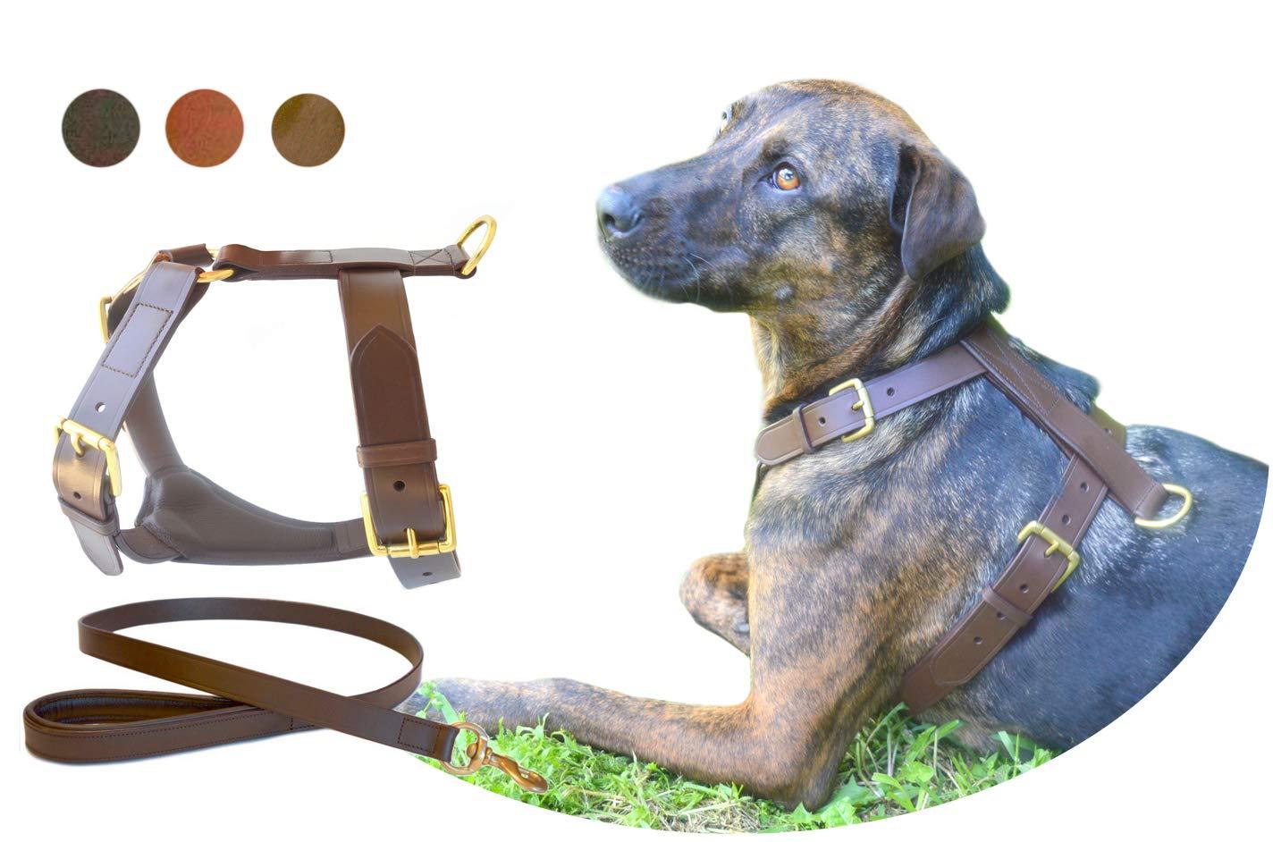 Black XLTUGBY XS S M L XL XXL Dog Leather Harness Sets (S, Black)
