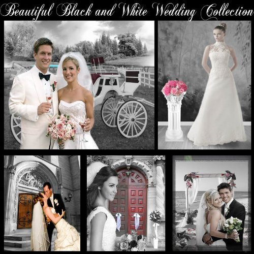 Beautiful Black and White Digital Backgrounds Photography Backdrops Wedding Series Green ()