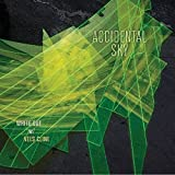 Accidental Sky by White Out With Nels Cline