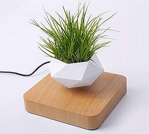 Whspndu Magnetic Levitation Air Bonsai Pot, Mini Sky-Garden Rotating Flowerpot Planter, for Home and Office Decor or Gift (Light Wood)