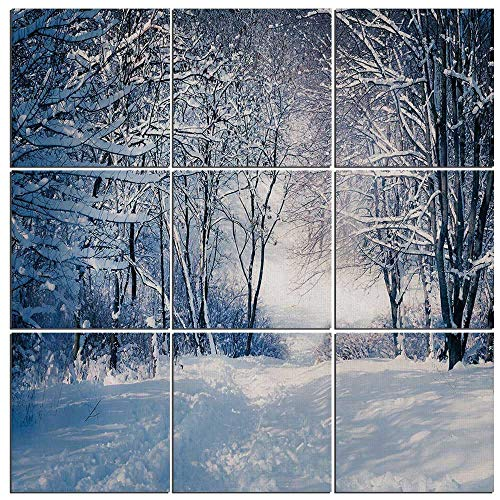 iPrint Canvas Art Winter Wall Decor 9 Panel Canvas Artwork Modern Pictures Framed Ready to Hang -,Alley in Snowy Forest Cold Freezing Weather Rural Nature Outdoors Woodland Decorative,60