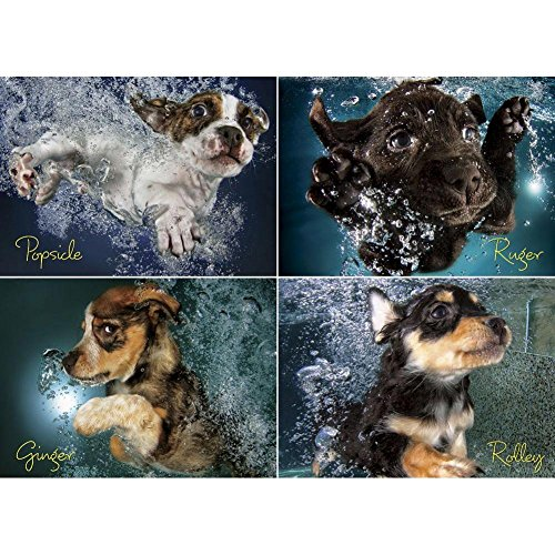 Willow Creek Press Underwater Puppies Jigsaw Puzzle (1000-Piece)