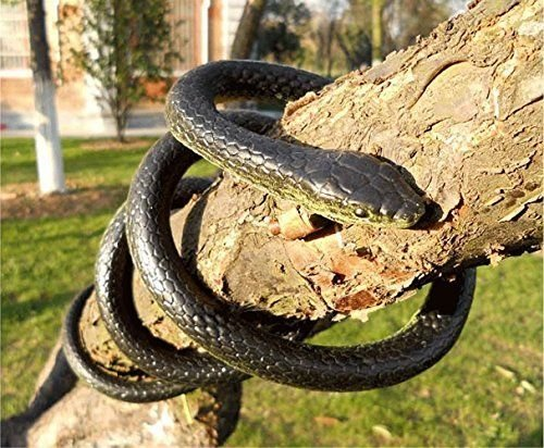 rubber-snake-toy-northbear-realistic-rubber-black-mamba-snake-toy-52-inch-long-party-prank