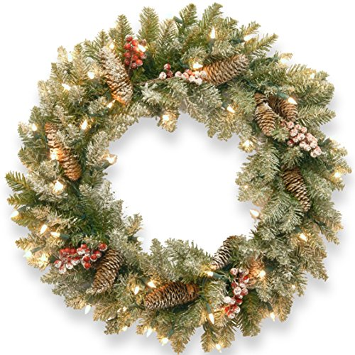 """National Tree 24"""" Dunhill(R) Fir Wreath with Clear Lights"""