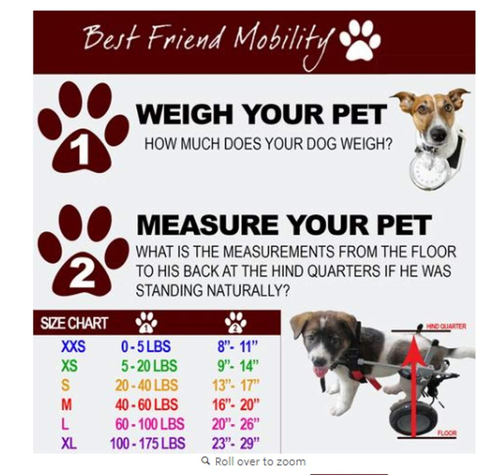 Best Friend Mobility Dog Wheelchair, Large(27 - 45 Kg)
