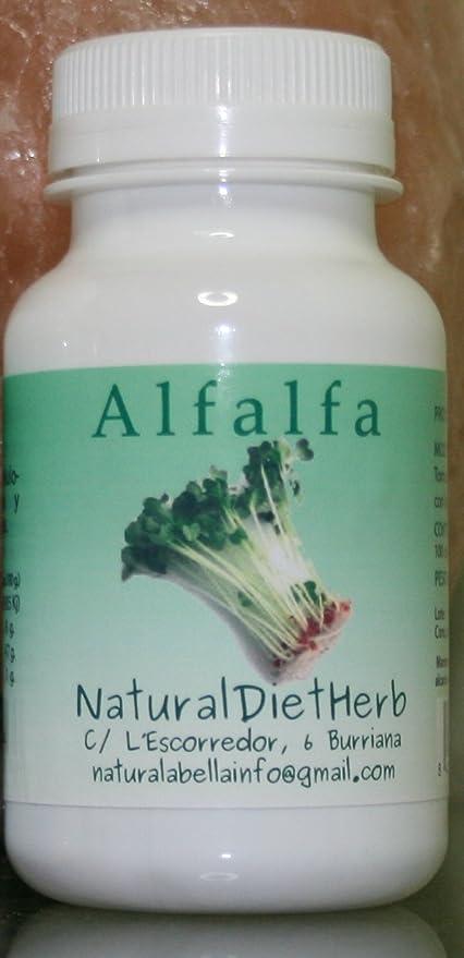Alfalfa 100 Comprimidos Tónico para la indigestión, la dispepsia, la anemia, etc