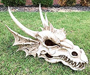 "Large 19.5""L Prehistoric Fossil Elder Skeletal Dragon Skull Statue Halloween Decor +eBook"