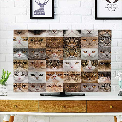 Protect Your TV Decor Collection 36 Cat Heads Breed British Shorthair Turkish Angora Looking at Camera Protect Your TV W35 x H55 INCH/TV 60