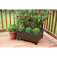EMSCO GROUP Earth Brown Resin Raised Garden Bed