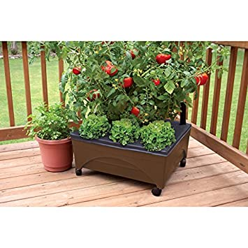 Amazoncom Earth Brown Resin Raised Garden Bed Grow Box Kit with