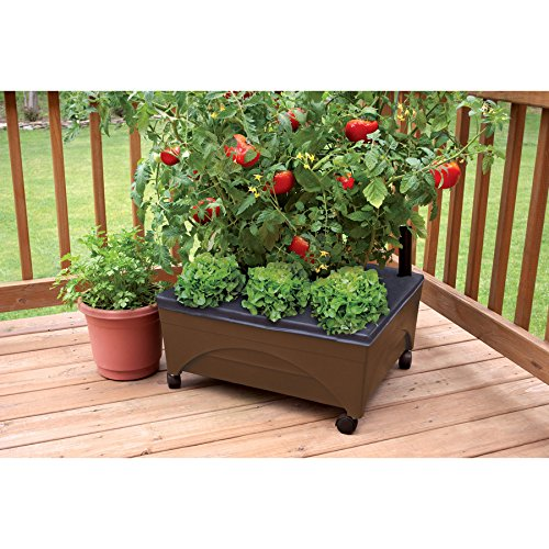 Earth Brown Resin Raised Garden Bed Grow Box Kit with Self Watering System and Casters Patio and Deck Gardening Box Caster