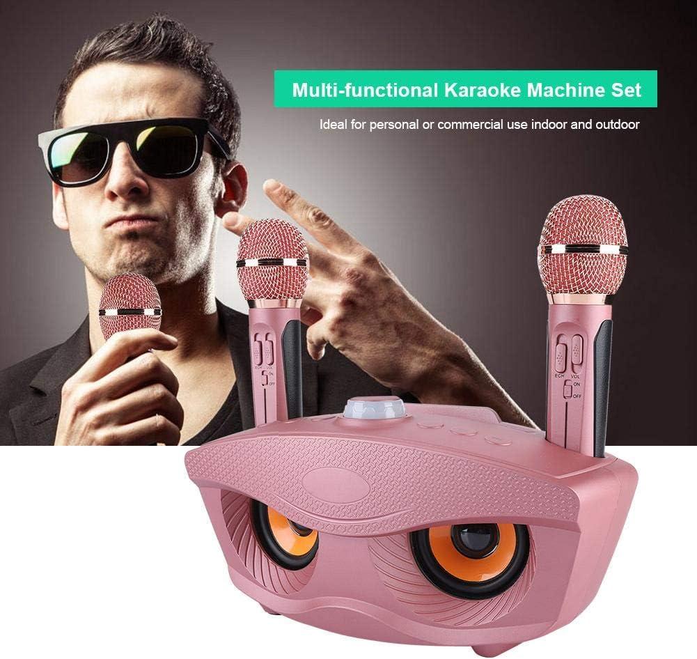 Machine de Haut-Parleur sans Fil Bluetooth de karaok/é Maison 2 radios FM Mircophones Hongzer Machine de karaok/é amplificateur Multifonctionnel Haut-Parleur et Jeu de Micro