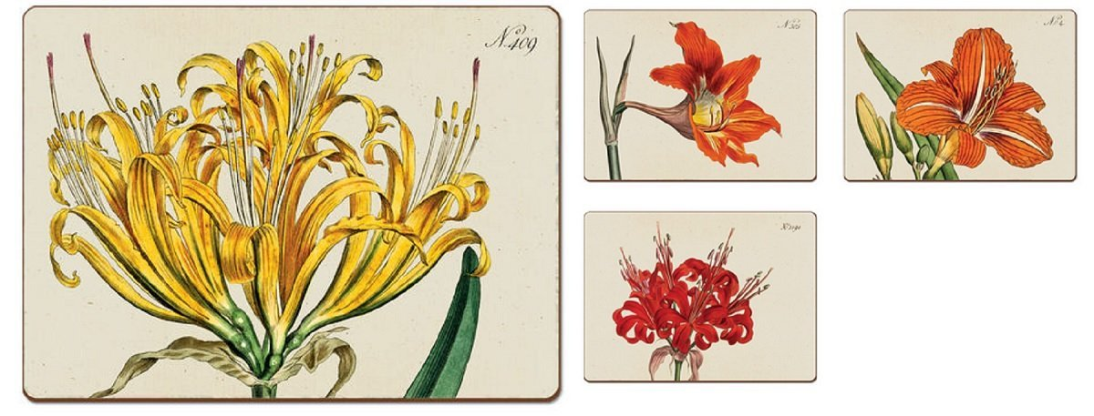 4 Cala Home Premium Hardboard Placemats Table Mats, Botanical Lilies by Cala Home