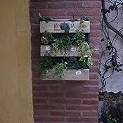 Hortalia 200061 - Huerto Urbano Jardín Vertical Pared, Talla S ...