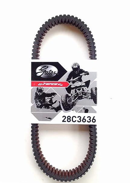 Amazon.com: Arctic Cat Wildcat Belt Gates CVT Carbon Cord Drive Belt 28C3636: Automotive