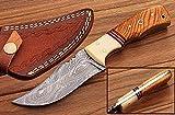 Custom Made Burl Wood/Bone Handle Full Tang Damascus Steel Hunting Knife W/Case Review