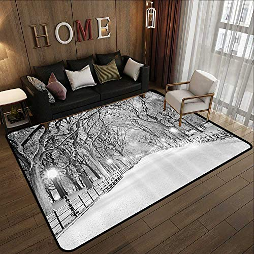 Indoor Outdoor Rugs,Winter Decor,View of Central Park in Winter Snowy Trees and The Walkway Digital Print,Black and White 59