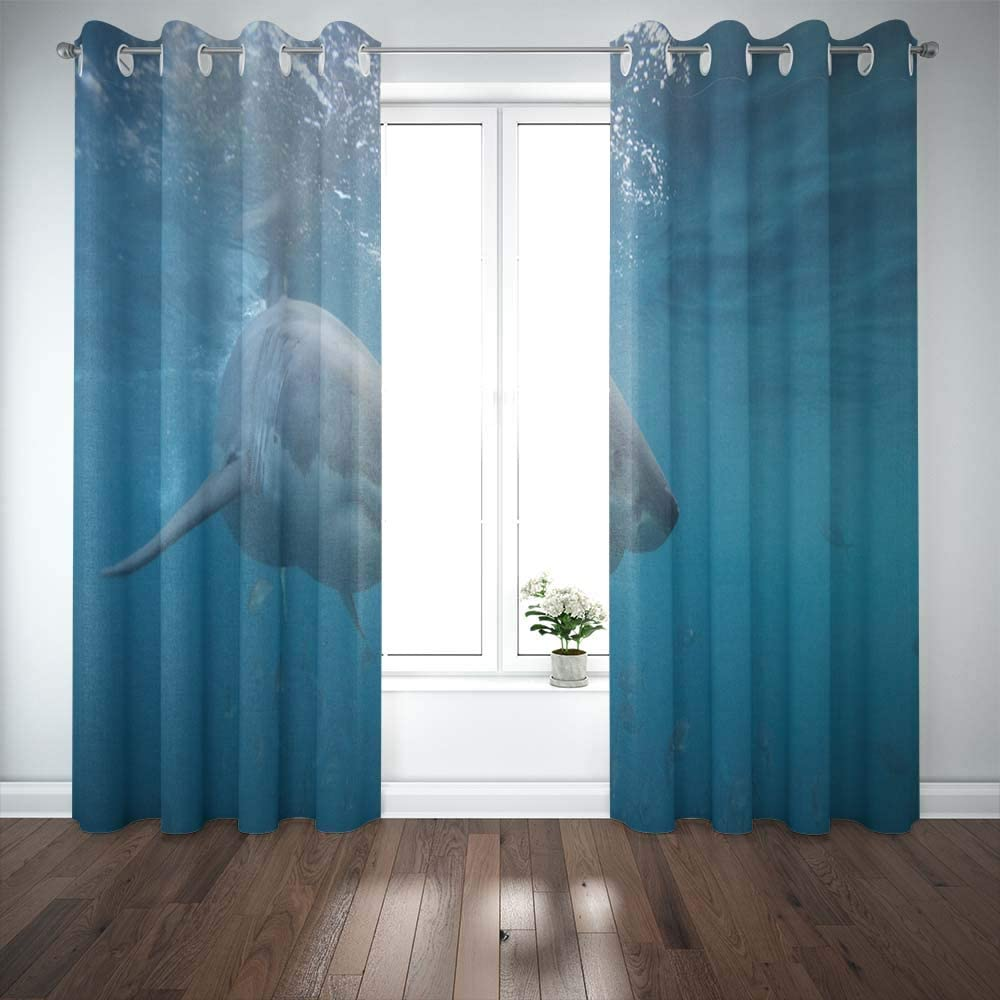 Shorping 52X84 Inch 3D Window Curtains, Privacy Window Curtain Great White Shark Neptune Islands South Australia Ocean Carcharias Indian Window Blackout Curtains for Bedroom,2 Pc