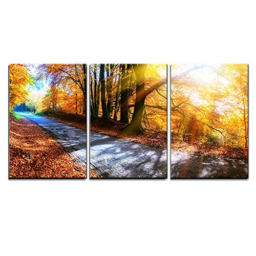 wall26 - 3 Piece Canvas Wall Art - Panoramic Autumn Landscape with Country Road in Orange Tone - Modern Home Decor Stretched and Framed Ready to Hang - 16''x24''x3 Panels by wall26 (Image #1)