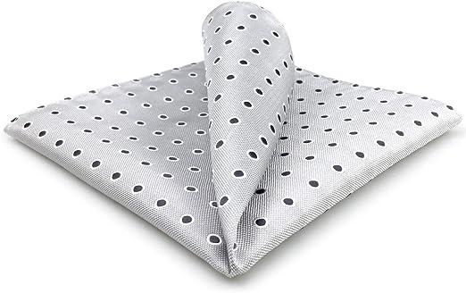 Shlax/&Wing Mens Pocket Square Blue Paisley Stripes Hanky Silk New Design