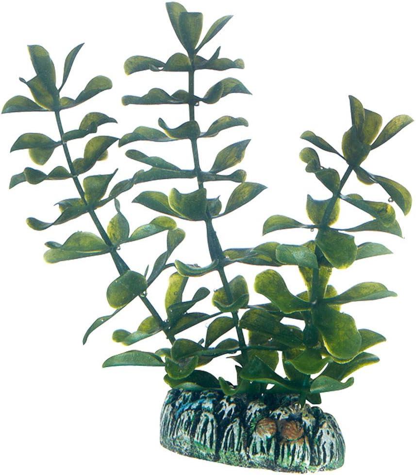 5 Pezzi Hobby 51484 Set di Piante Artificiali Plantasy
