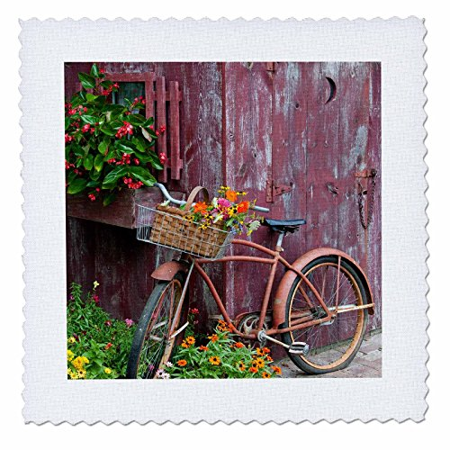 3dRose Danita Delimont - Bicycles - Old bicycle with flower basket next to garden shed, Illinois - 25x25 inch quilt square (qs_259309_10)