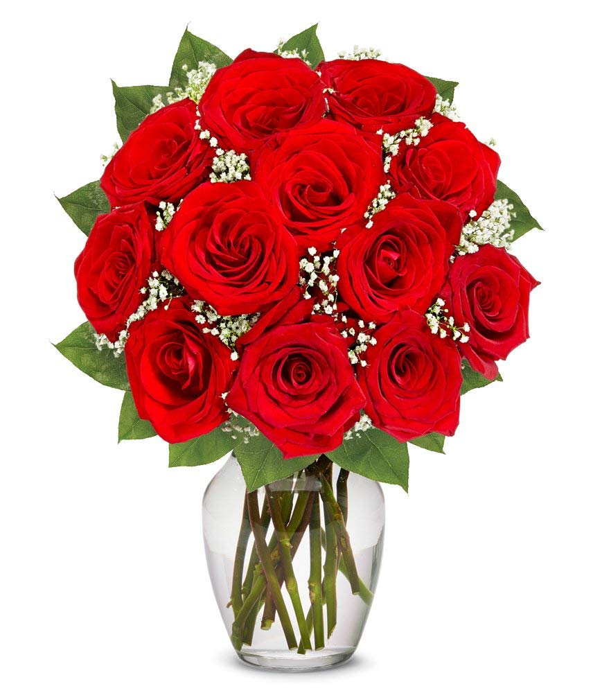 Flowers - One Dozen Long Stemmed Red Roses (Free Vase Included) by From You Flowers