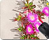 MSD Mousepad Mouse Pads/Mat design 19397081 Hottentots Fig flowers on a dune sand in Sardinia