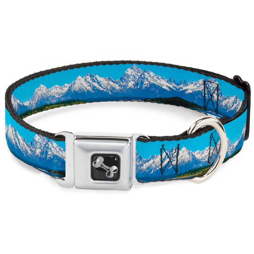 Buckle-Down 13-18  Landscape Snowy Mountains Dog Collar Bone, Wide Small