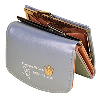 Dosige 1PCS Mujer Mini Cartera,Billetera plegable,Color caramelo de Billetera,Material de PU size 18*12cm (Azul): Amazon.es: Equipaje