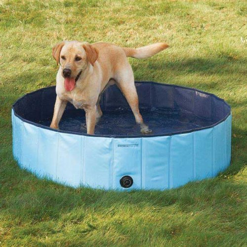 Pettom Foldable Large Dog Cat Aerated Gas-filled PVC Swimming Pool Bathing Tub Bathtub Blue Large by Pettom