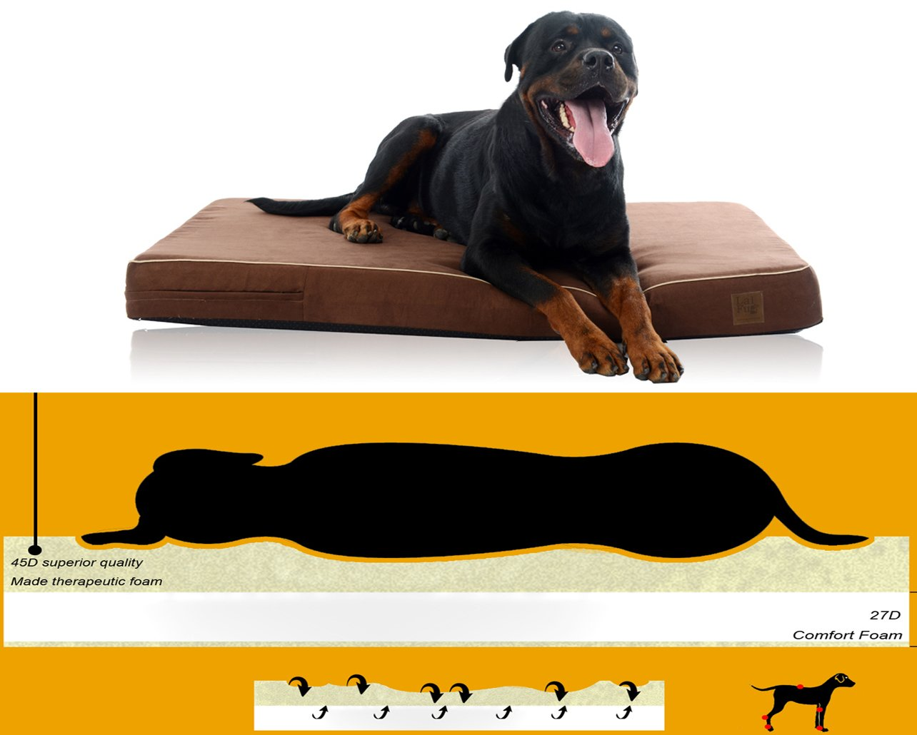 Laifug Orthopedic Memory Foam Pet/Dog Bed (Medium34''x22''x4'', Chocolate) with Durable Water Proof Liner and Removable Designer Washable Cover