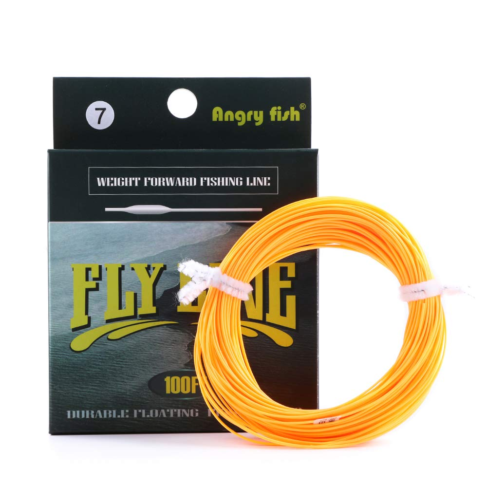 Angryfish 100 ft wf5 / wf6 / wf7ライン重量フォワードフローティングFly Line with FloatingナイロンラインTapered引出線ループ WF5 オレンジ B07BXZBLCQ