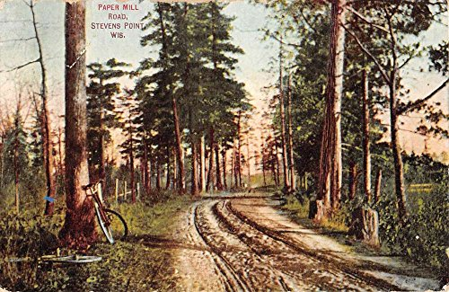 (Stevens Point Wisconsin Paper Mill Road Scenic Antique Postcard K55810)
