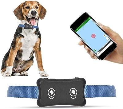 Amazon.com: Hffheer 2G perro GPS Tracker collar anti pérdida ...