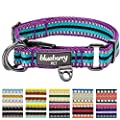 Blueberry Pet Multi-colored Stripe Dog Collar Collection - 11 Colors 3M Reflective Collars, 6 Colors Staple Striped Genuine Leather Collars, Matching Leash & Harness Available Separately by Blueberry Pet