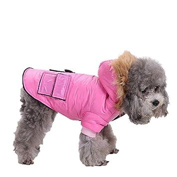 Rawdah_Mascota Ropa para Perros Peque?os Abrigos Camiseta Jerseyss Mascota Perro Gato Cachorro Invierno Ropa De Abrigo? Chaqueta De Traje Abrigo De Ropa: ...