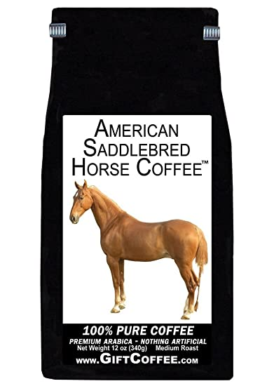 Image Unavailable. Image not available for. Color: American Saddlebred Horse Gift ...