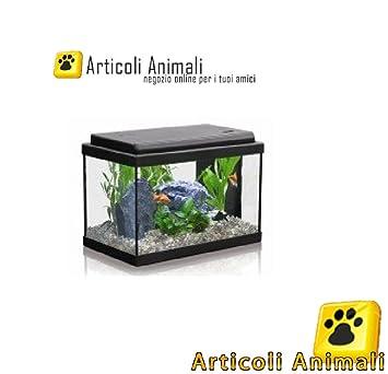 Acuario Atlantis 40 41 x 20 x 27 Completo con LED y filtros: Amazon.es: Hogar