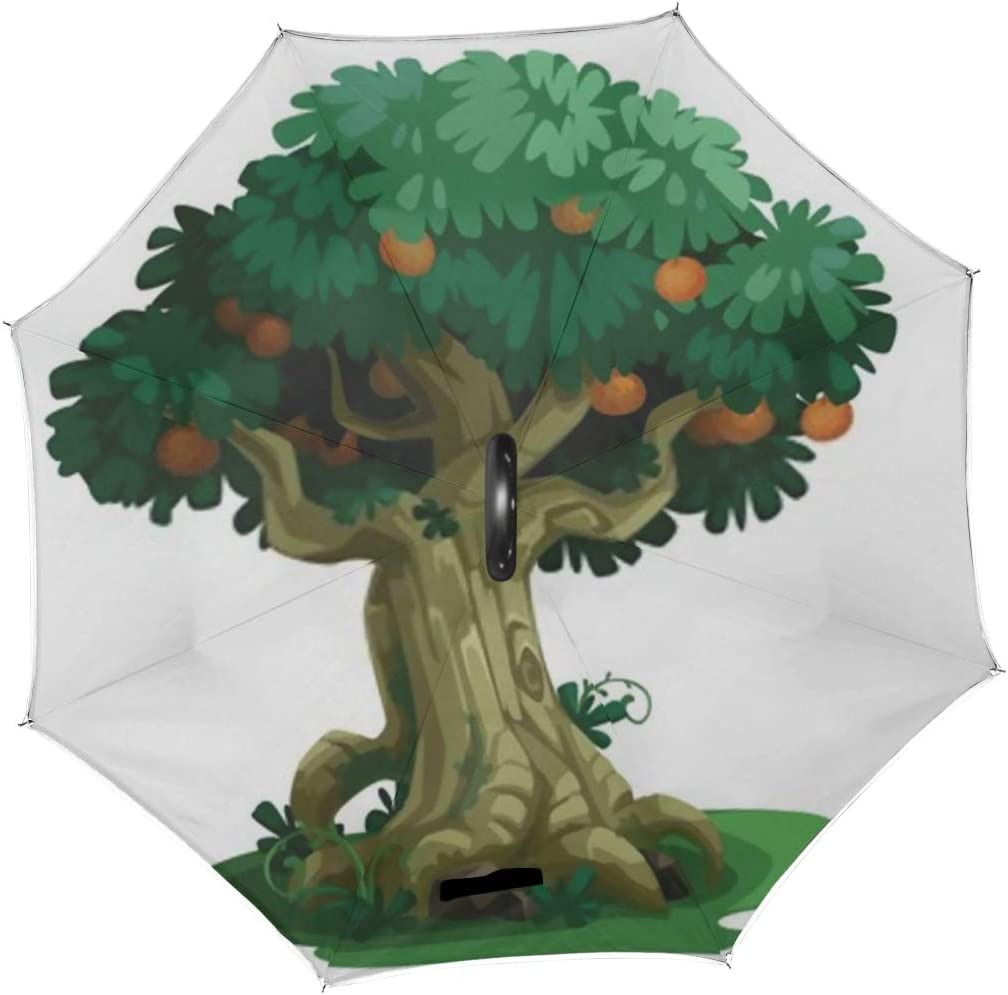 Double Layer Inverted Inverted Umbrella Is Light And Sturdy Beautiful Tree Fruits Concept Art Reverse Umbrella And Windproof Umbrella Edge Night Refl