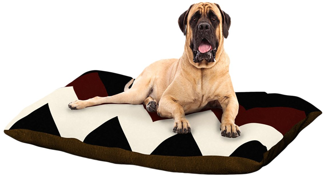 Oxfords and Button Ups XLarge 40  x 50 Kess InHouse Catherine McDonald Juicy Chevron Fleece Dog Bed, 30 by 40Inch
