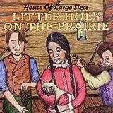 Little Hols on the Prairie