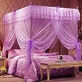 DE&QW Four corner pink princess mosquito net, Three-door Stainless steel Square top Bold Stand Floor-standing Court Mosquito curtain-B Queen2