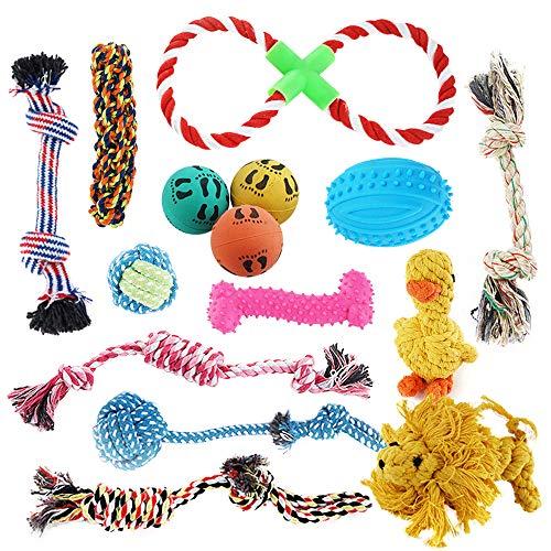 Pet Mania 15 Stück Hundespielzeug inkl. Kauspielzeug & Seile – Ungiftig, Geruchlos & Robust