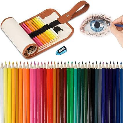 Lápices De Colores Set, 36 Kit De Dibujo De Lápiz De Color Con Roll Up Canvas Caso Para Adultos y Niños (Khaki): Amazon.es: Oficina y papelería