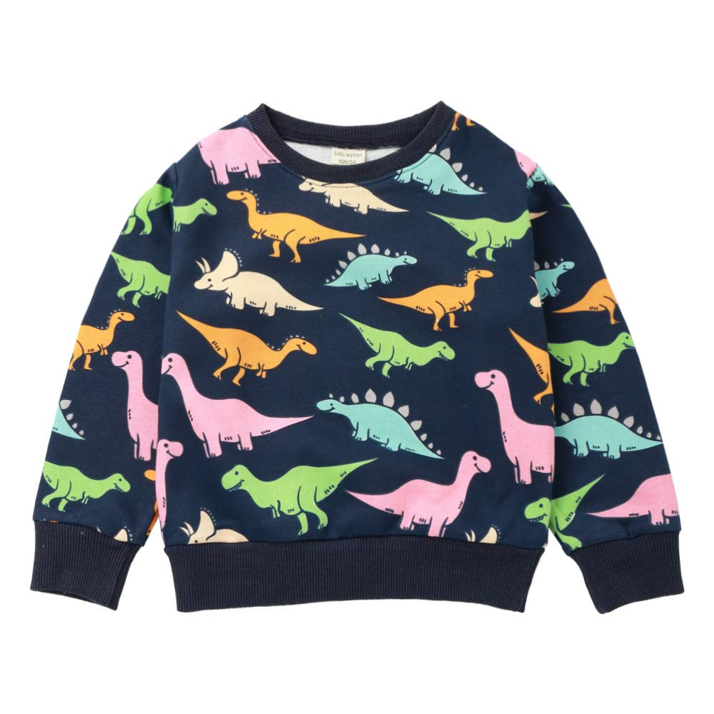 Kid Boy Pullover Sweatshirt Sweater Outfits Toddler Dinosaur T Shirt Top Spring Winter Clothes 2-9t