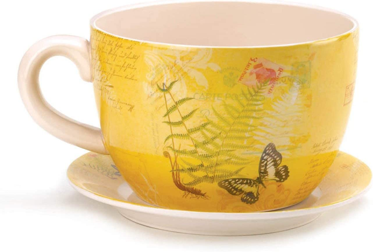 Butterfly Dolomite Tea Cup Planter 6 25 Inches Garden Outdoor