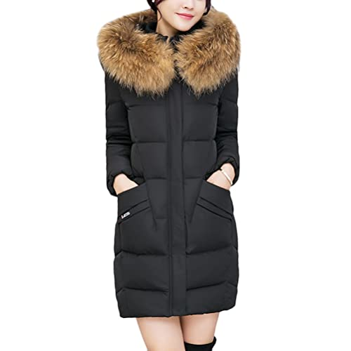 Zhhlaixing Mujeres Abrigo para Invierno Korean Slim Fashion Big Collar Students Down Cotton Padded L...